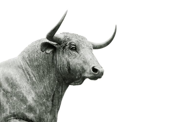 Bitcoin bullmarkt