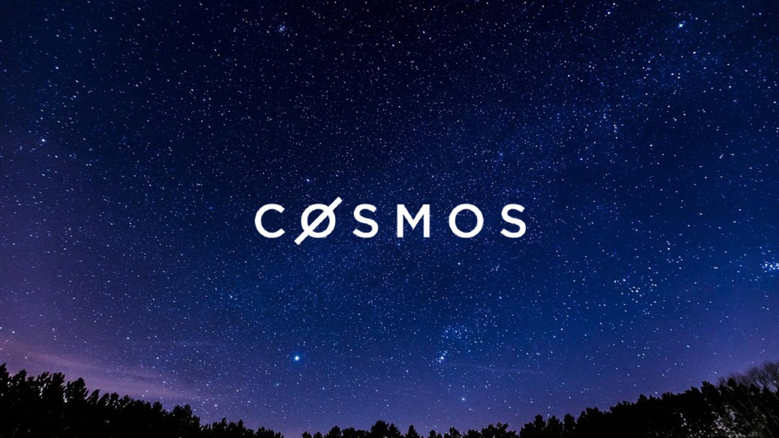 Cosmos (ATOM) coin review