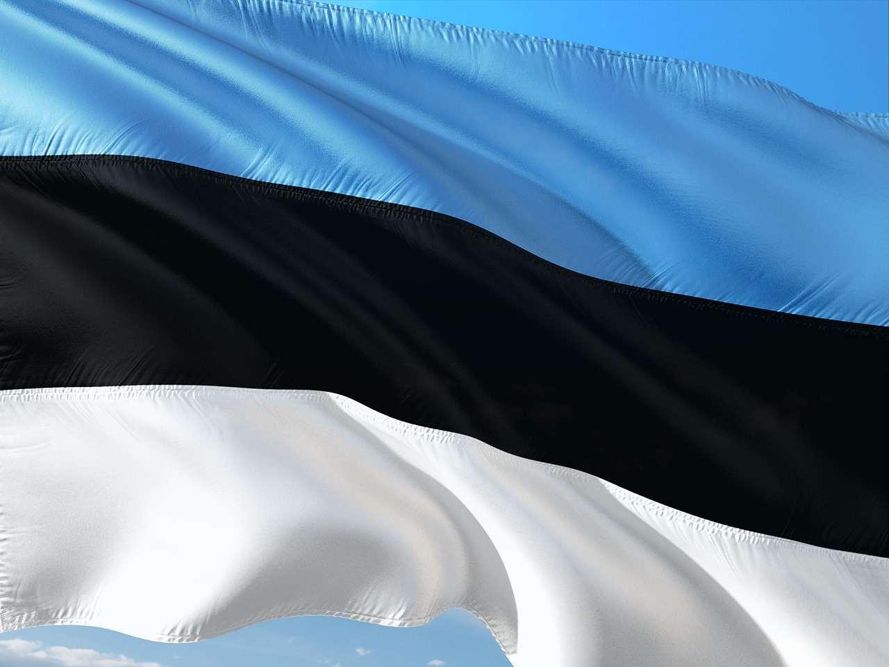 Estland digitale valuta